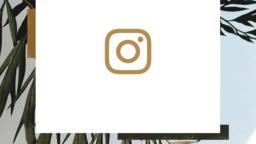 Palm Sunday Hosanna instagram 16x9 PowerPoint Photoshop image
