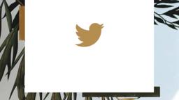 Palm Sunday Hosanna twitter 16x9 PowerPoint Photoshop image