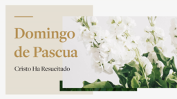 Happy Easter domingo de pascua cristo ha resucitado 16x9 PowerPoint Photoshop image
