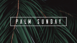 Palm Sunday Branches 16x9 PowerPoint Photoshop image