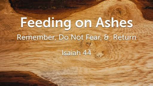 Feeding on Ashes