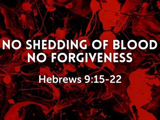 No Shedding Of Blood No Forgiveness