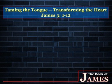 James: Taming the Tongue - Transforming the Heart (Part 9) w/ Shawn Miller