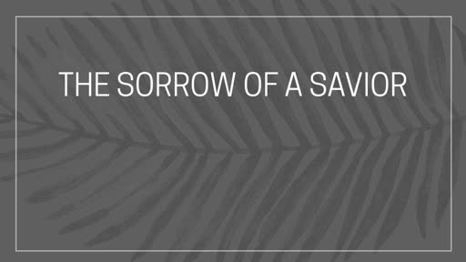 The Sorrow of a Savior