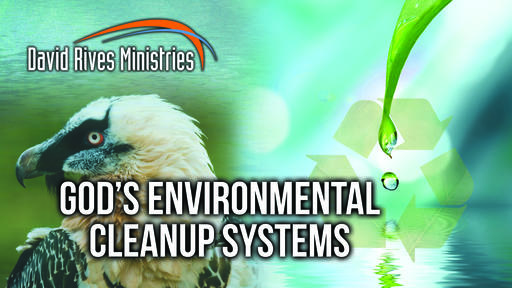 Gods Environmental Cleanup Systems