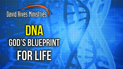 DNA God's Blueprint For Life