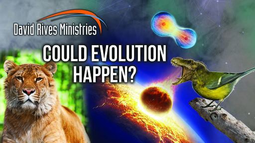 Could Evolution Happen?