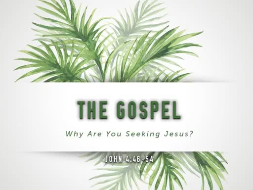 The Gospel: Why Are You Seeking Jesus?