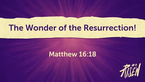The Wonder of the Resurrection!