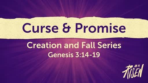 Curse & Promise