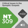 Mobile Ed: NT309 Critical Issues in the Synoptic Gospels (audio)