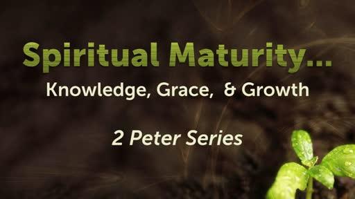 14 Spiritual Taste-buds that Love and Savor Scripture