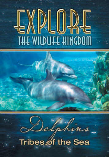 Dolphins - Tribes Of The Sea