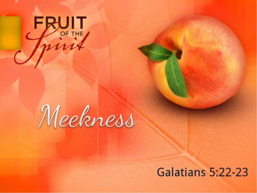 The Fruit of the Spirit- Meekness