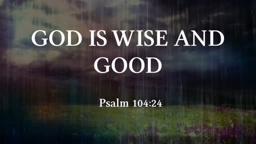 God is Wise and Good
