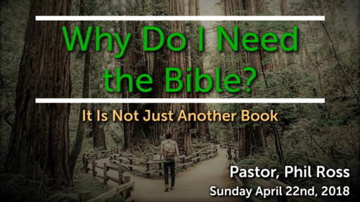 Why do I need the Bible?