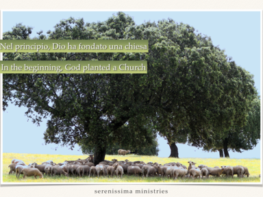 In the beginning, God planted a Church