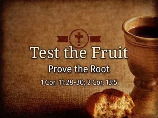 Test the Fruit and Prove the Root