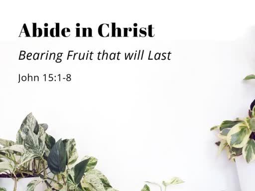 Abide in Christ (Jn 15:1-8)