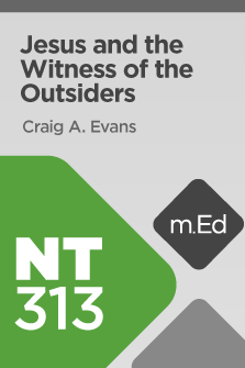 NT313 Jesus and the Witness of the Outsiders (Course Overview)