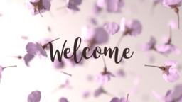 Sakura Spring welcome 16x9 PowerPoint Photoshop image