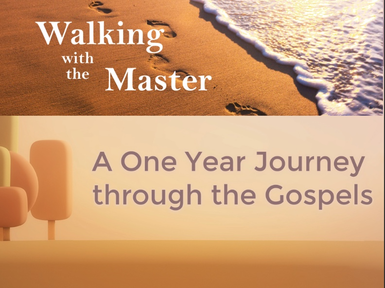 A One Year Journey Through the Gospels