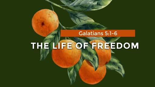 Galatians - Week 18 - 5:1-6