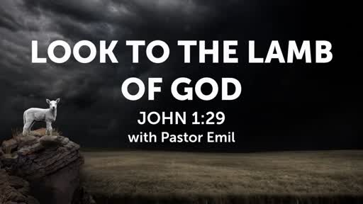 Look To The Lamb of God