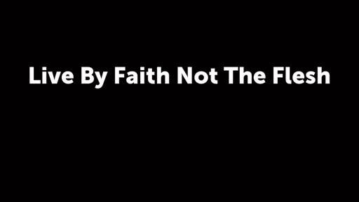 Live By Faith Not The Flesh