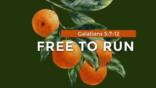 Galatians - Week 19 - 5:7-12