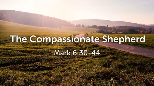 The Compassionate Shepherd