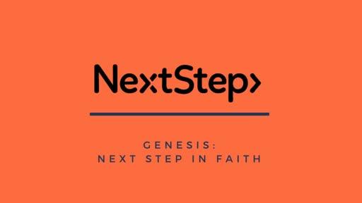 Next Steps in Sacrifice - Genesis 6-8