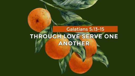 Galatians - Week 20 - 5:13-15