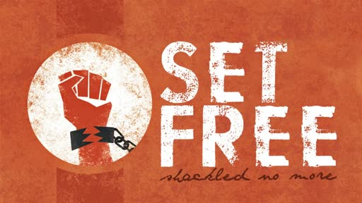 Set Free To Choose
