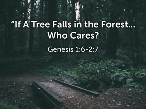 If a Tree Falls in the Forest...Who Cares?