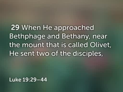 Luke 19:28-44 June 3, 2018
