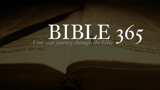 Bible 365