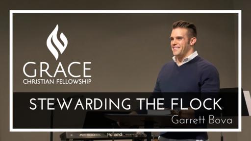 Edit Stewardship Part 8 - Stewarding The Flock