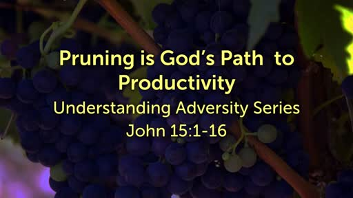 Pruning is God's Path to Productivity