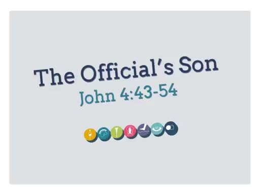 The Officials Son