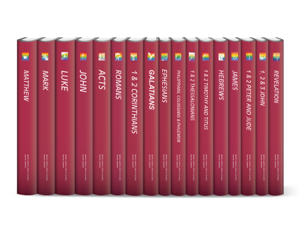 The Life Application Bible Commentary (17 vols.)