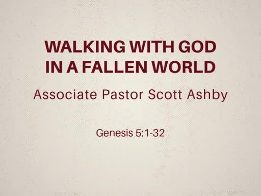 Walking with God in a Fallen World