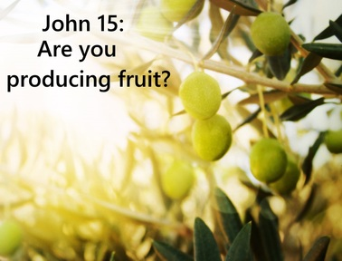 John 15: Are you producing fruit?