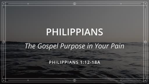 Gospel Purpose in Your Pain
