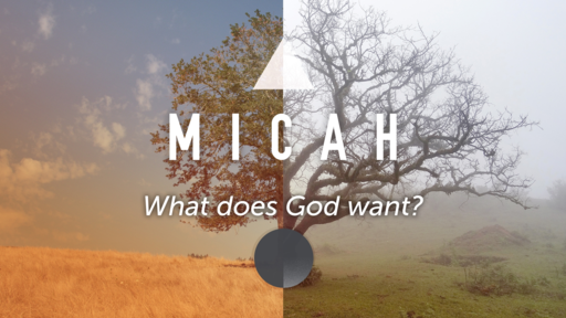 Micah: What Does God Want
