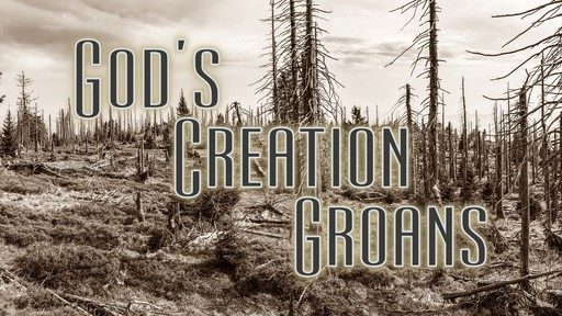 God's Creation Groans