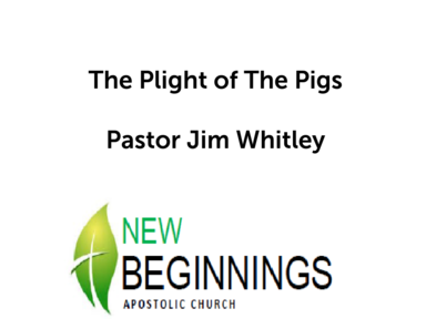 Chronology of the New Testament Wed 07-25