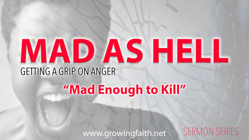 Mad Enough to Kill