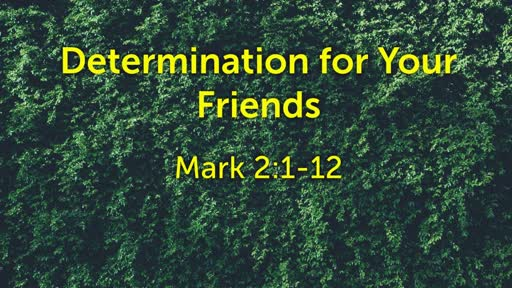 Determination for Your Friends