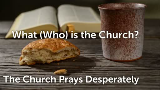 The Church Prays Desperately